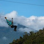 Boquete Tree Trek Zip-line