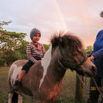  Mini-pony ride amidst a double rainbow!