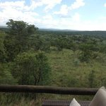 Wild Ivory Eco lodge Foto