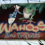                    Welcome to Wahoos