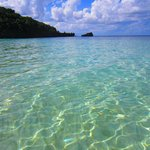 The beautiful crystal clear water. Stingrays swam by our feet.