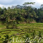 MikeBali Tours - Private Tours
