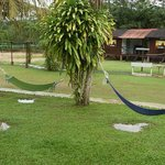 swings and hammock