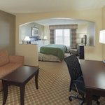 CountryInn&Suites Tuscaloosa  Suite