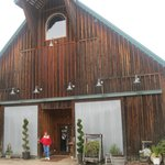                   Historic old barn is the tasting room for Melrose Vineyards