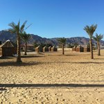                    The camp with the bungalows and the commun Toilets and Showers