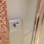                    Shower Door &quot;handle&quot;