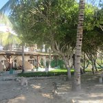                    eden beach hacienda, view from the beach
