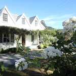 Φωτογραφία: Marlborough Bed & Breakfast
