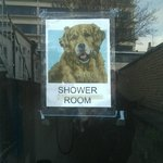                    Doggy shower room :-)