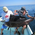                    Sailfish on our first day