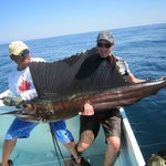                    Another shot of the sailfish