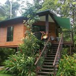 Kuranda Birdwatchers  Cabin