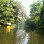 Goa Kayaking - Day Tours