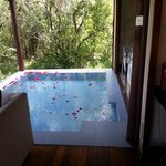                    plunge pool