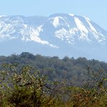 Kilimanjaro from the viewing platform at Twiga Lodge