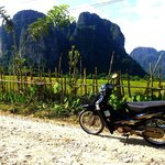                    vangvieng