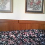 Φωτογραφία: Econo Lodge Ruther Glen