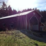                    Office Covered Bridge near Oakridge - Westfir Lodge is behind the bridge