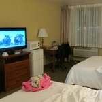 BEST WESTERN PLUS Skagit Valley Inn resmi