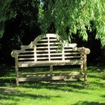 Bench under a weeping willow in the garden