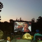 Ford Focus Moonlight Cinema