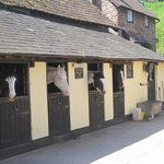 Burrowhayes Farm Riding Stables