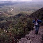 Bluff Knoll