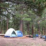 ‪North Rim Campground‬