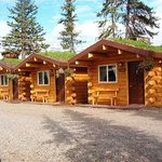 Burnt Paw & Cabins Outback