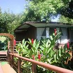 Foto de Aloha Maui Cottages