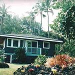 Hana Oceanfront Cottage