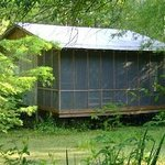 Wildlife Gardens Bed and Breakfast and Swamp Tours