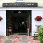 Bilde fra Shamrock Farms Bed and Breakfast