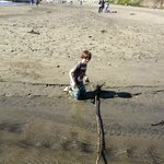 My kids loved the beach in Cayucos