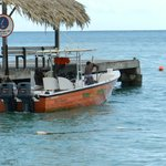Tour Tobago Private Tours