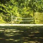 Volleyball court.