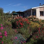 ‪Bay-view Homestay Kaikoura‬