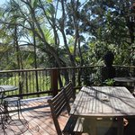 Bellingen YHA Backpackers Foto