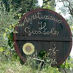 Agriturismo il Girasole
