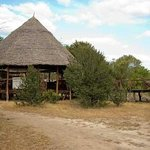 Selous Impala Camp