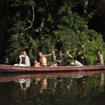Rainforest Life Tours - Day Tours
