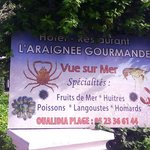 L&#39;araignee gourmande