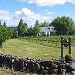 Vineyard View Bed &amp; Breakfast