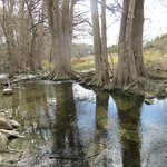                    Cibolo Creek, Cibolo Nature Preserve, Boerne, TX