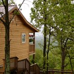 Skyline View Cabins