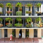 Photo of Rue Dumaine Guesthouse New Orleans