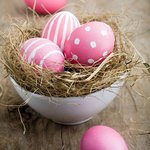 Enjoy Easter holidays at Zephyrus