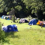Photo de Camping Muellerwiese