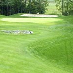Stone Tree Golf